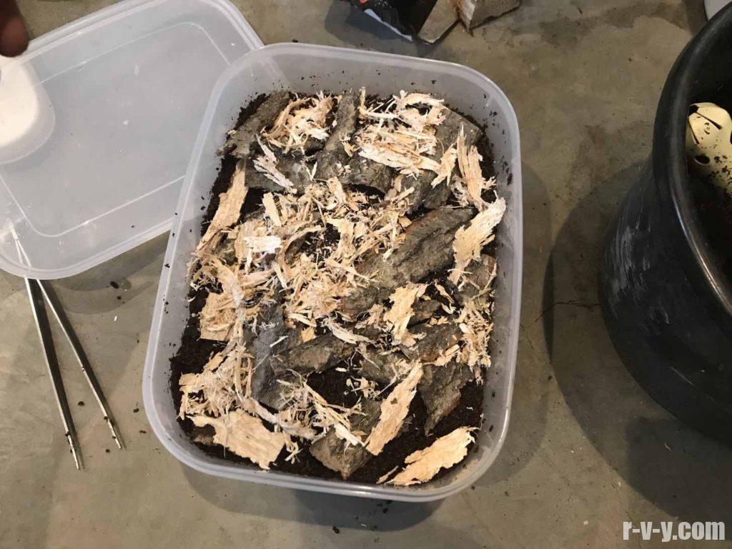 転倒防止に朽ち木の表皮をばらまく